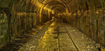 11شركة عالمية ومحلية..كيف جذب بريق الذهب المصري أباطرة المعدن الأصفر
