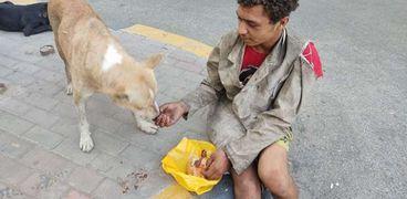 أحمد جاد يطعم الكلاب