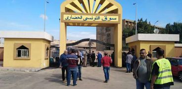 سوق التونسى الجديد
