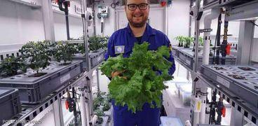 نجاح علماء في زراعة خضروات في جليد القارة الجنوبية
