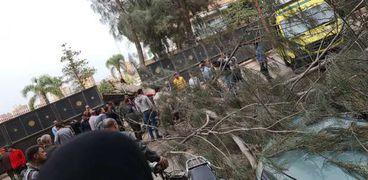 وفاة عامل دليفري بعد سقوط شجرة فوقه