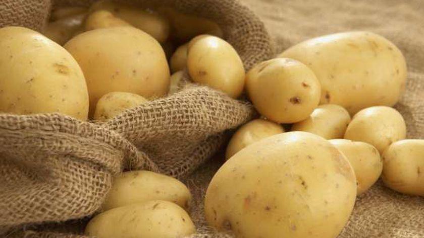 ارتفاع ملحوظ في أسعار البطاطس بمحافظة الدقهلية