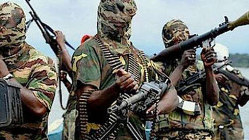 جماعة بوكو حرام الإرهابية
