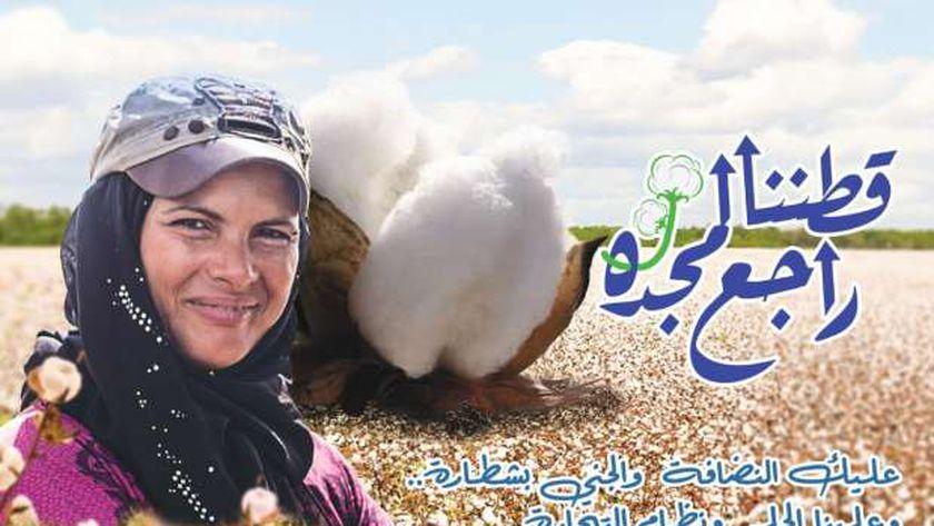 """مصر تحتفل باليوم العالمي لـ""""القطن"""" غداً"""