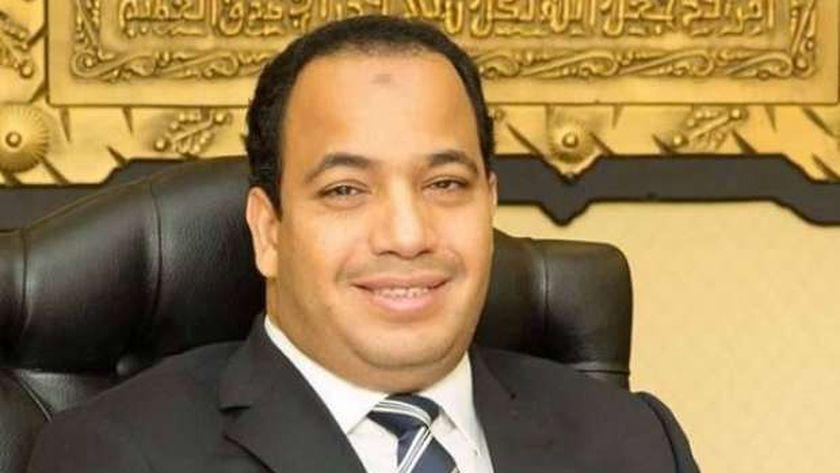الدكتور عبدالمنعم السيد مدير مركز القاهرة للدراسات الاقتصاديه والاستراتيجية