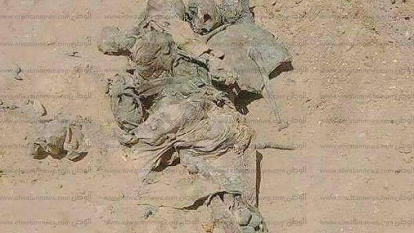 جثة شهيد حرب 73