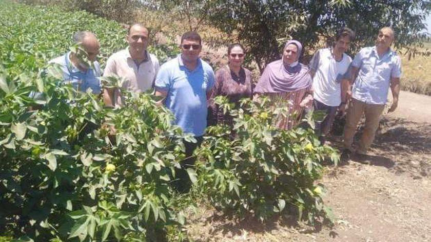 «وقاية النباتات» ينفذ عددا من المدارس الحقلية للمزارعين بالدقهلية