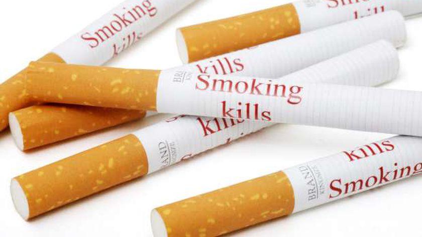 السجائر المهربة تقتنص 3.5%من حجم سوق الدخان في مصر