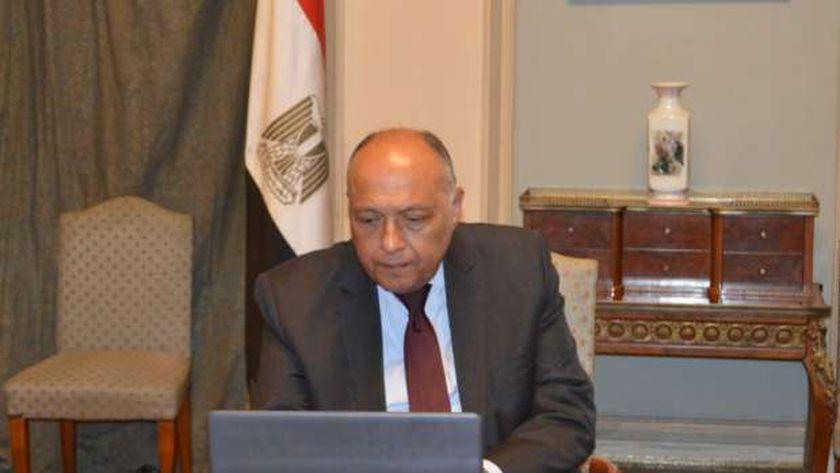 وزير الخارجية المصرى سامح شكرى