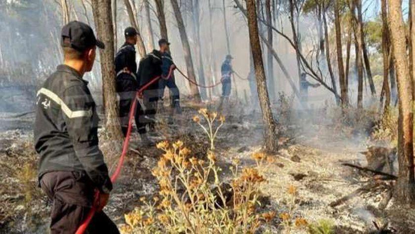 حرائق غابات تونس