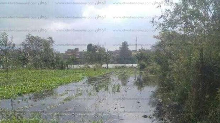 ارتفاع المياه الواردة الى مصر من منابع النيل