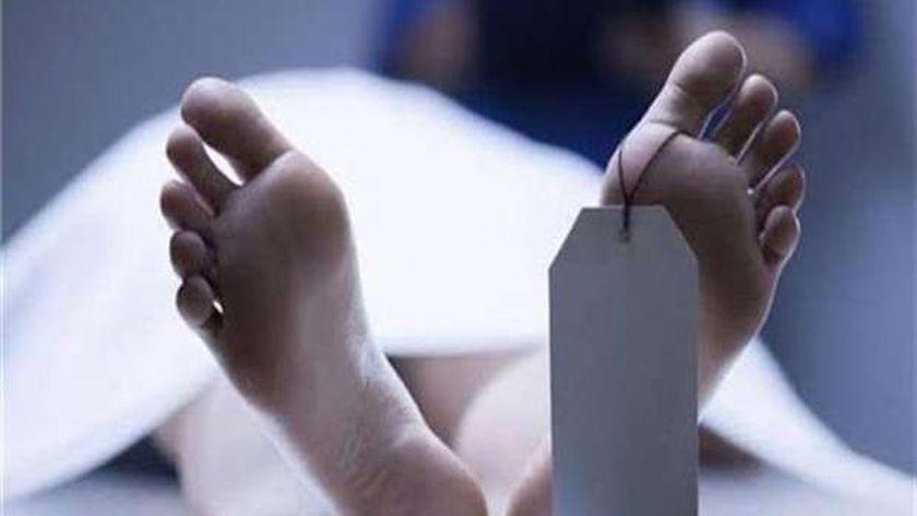 صورة ضبط عامل قمامة قتل زميله في شبرا الخيمة – المحافظات