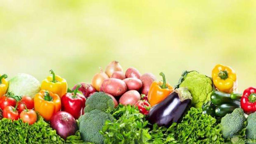 أسعار الخضروات في أسواق مصر اليوم