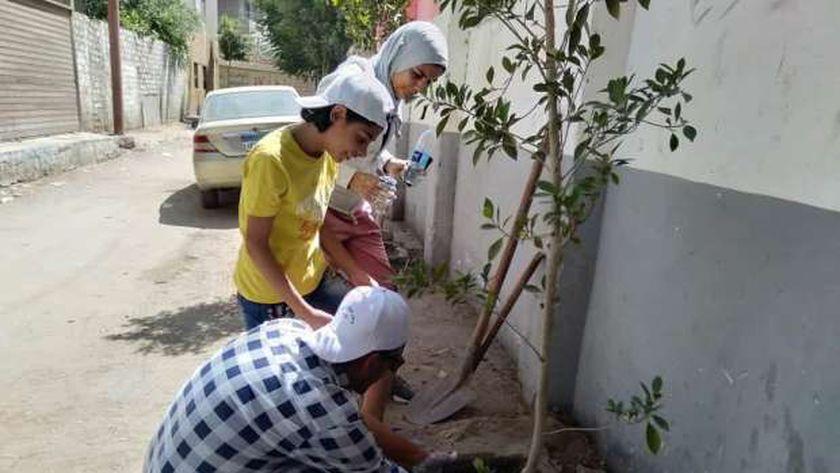 زراعة اشجار في المنيا