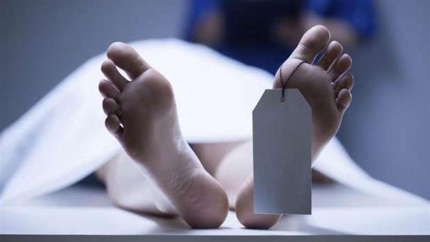 صورة أرشيفية-جثة هامدة
