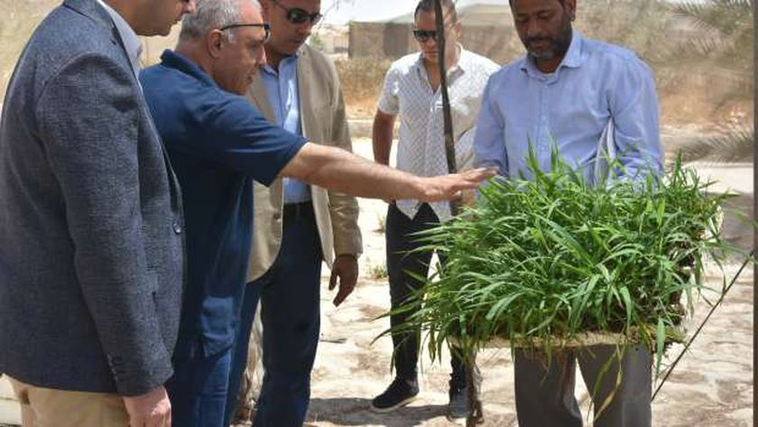 أعضاء البرنامج الرئاسي يتعرفون على مشروعات الثروة الحيوانية والزراعية مع مدير مركز التنمية المستدامة