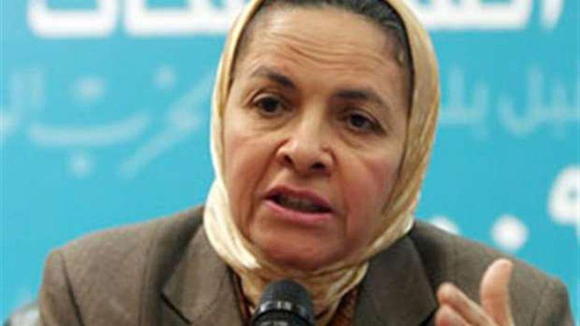أستاذ الاقتصاد في جامعة عين شمس