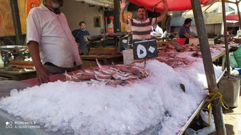 صورة رئيس «الأسماك» بدمياط: النوات وراء رفع الأسعار – المحافظات