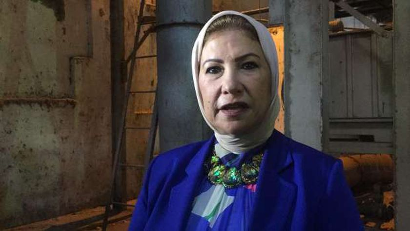 رئيس شركة مصر لحليج الأقطان