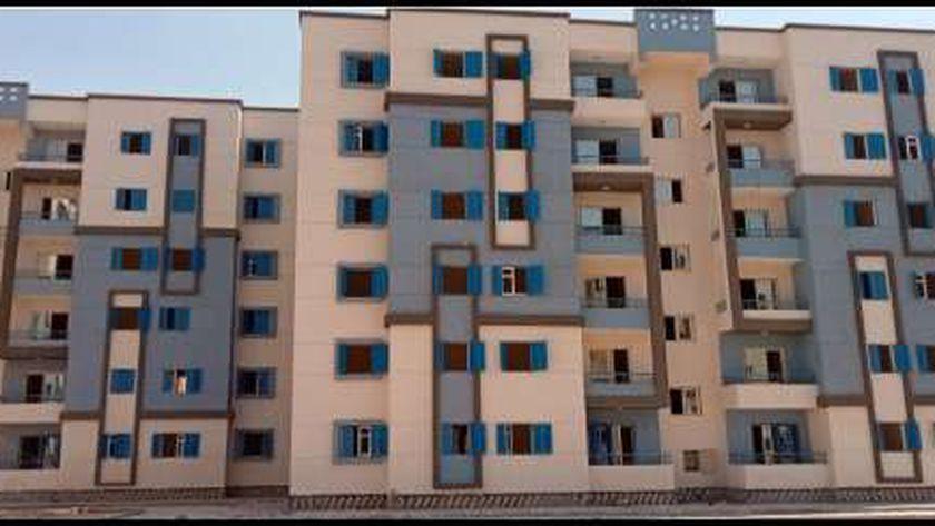 """مشروع زهور """"مايو"""" بمدينة حلوان.. صورة أرشيفية"""