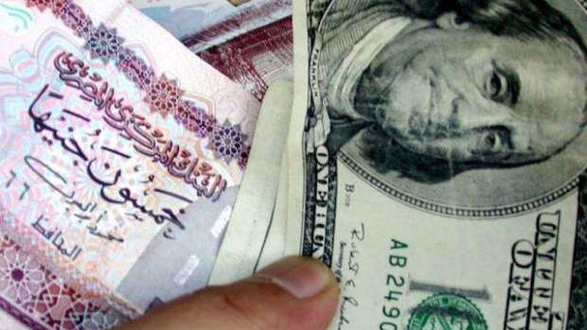 الدولار مستقر أمام الجنيه.. هذا سعره اليوم