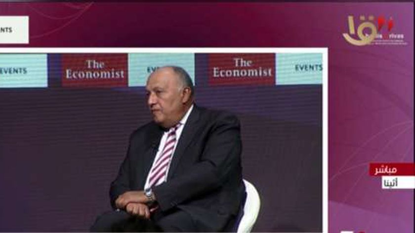 وزير الخارجية المصري