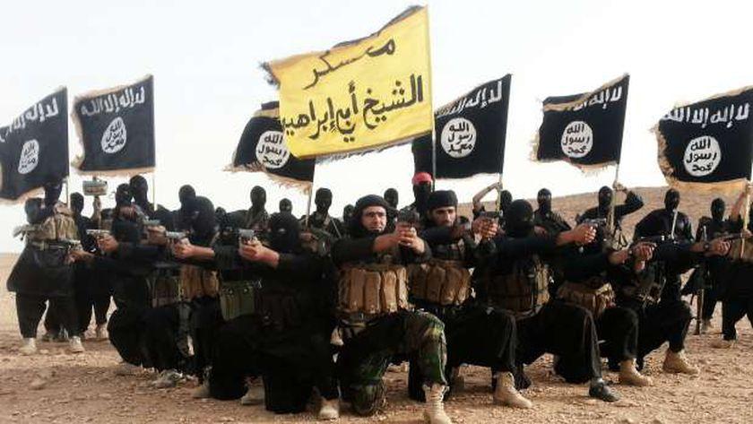 الإفتاء:  داعش  مفسدون في الأرض.. ويستخدم عناصره لنشر كورونا - مصر -