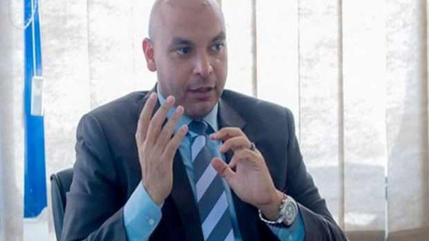 محمود فيصل، أمين شباب حزب حماة الوطن