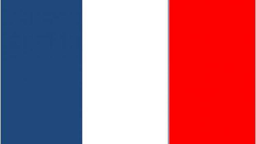 """وزارة""""الصحة الفرنسية"""": ارتفاع حصيلة وفيات كورونا إلى 28530 حالة"""