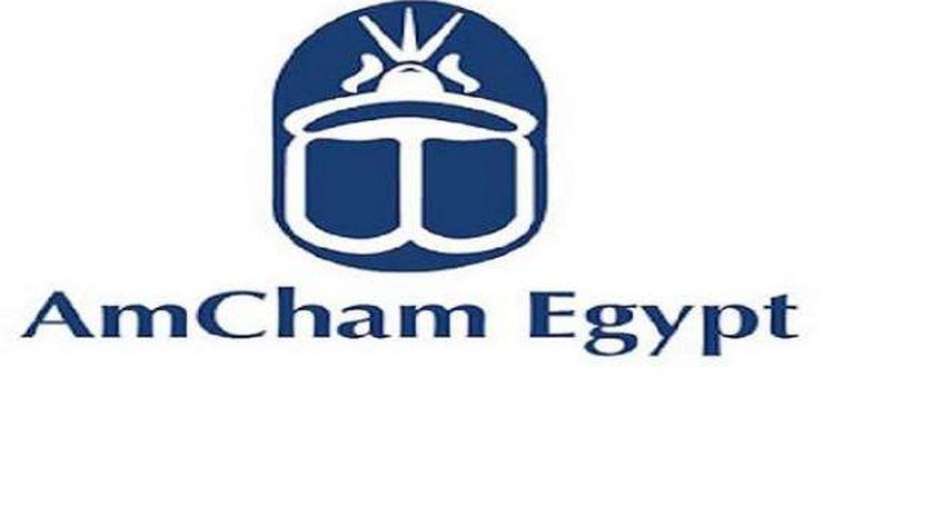 20% قوة المرأة في سوق العمل في مصر
