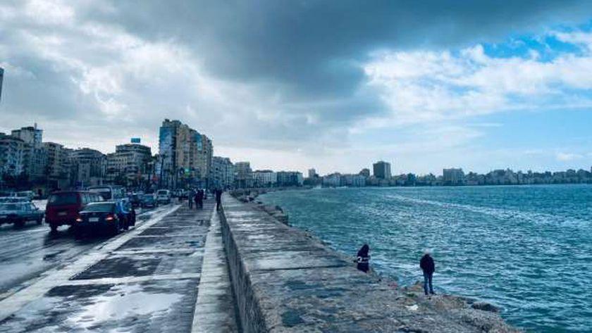 نوه الكرم في الإسكندرية