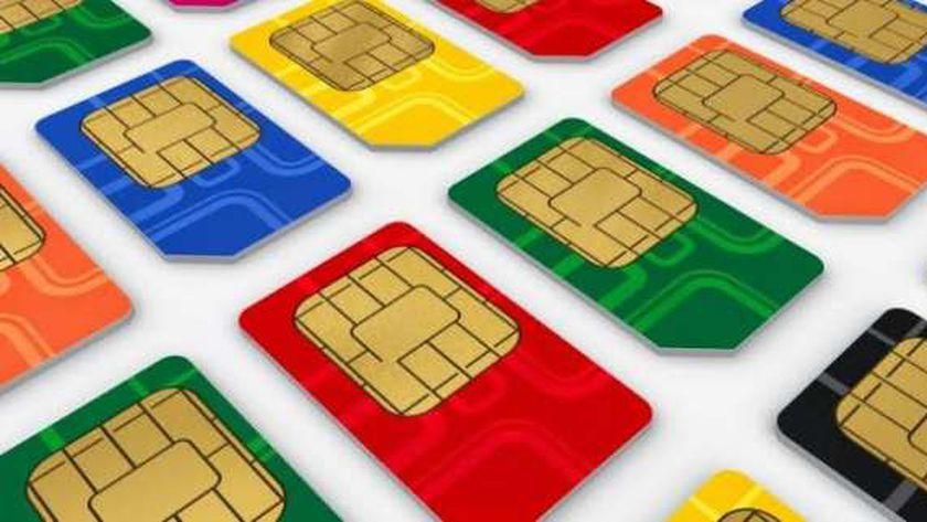 ارتفاع عدد مستخدمي الإنترنت في مصر