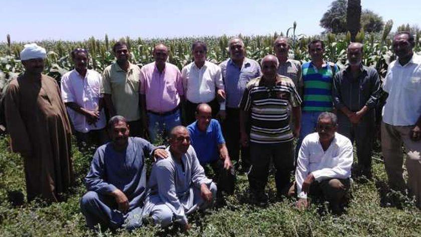 الزراعة تنفيذ 21 مدرسة حقلية في أسبوع في معظم المحافظات