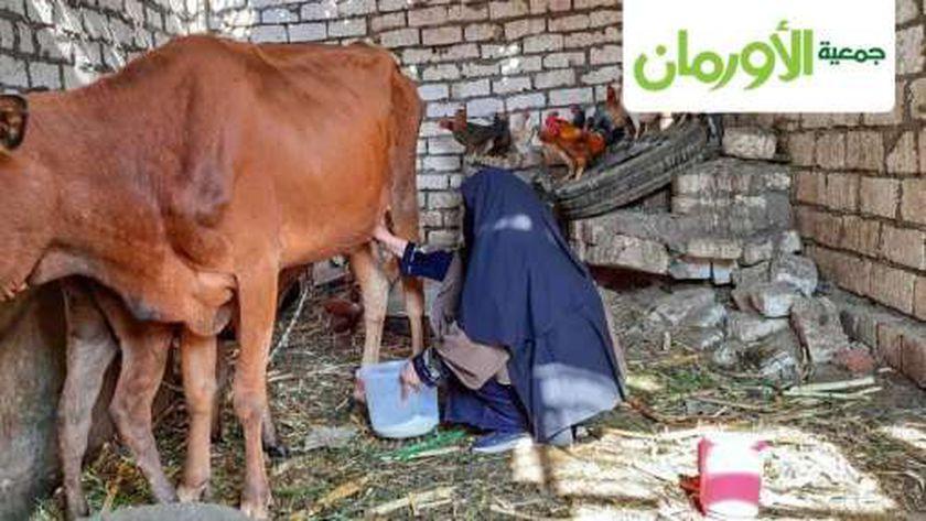 أم إسلام ومشروعها