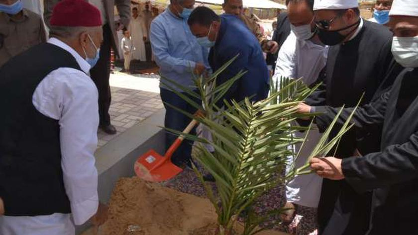 محافظ مطروح خلال زراعته نخلة أمام مسجد الرحمن الجديد بسيوة