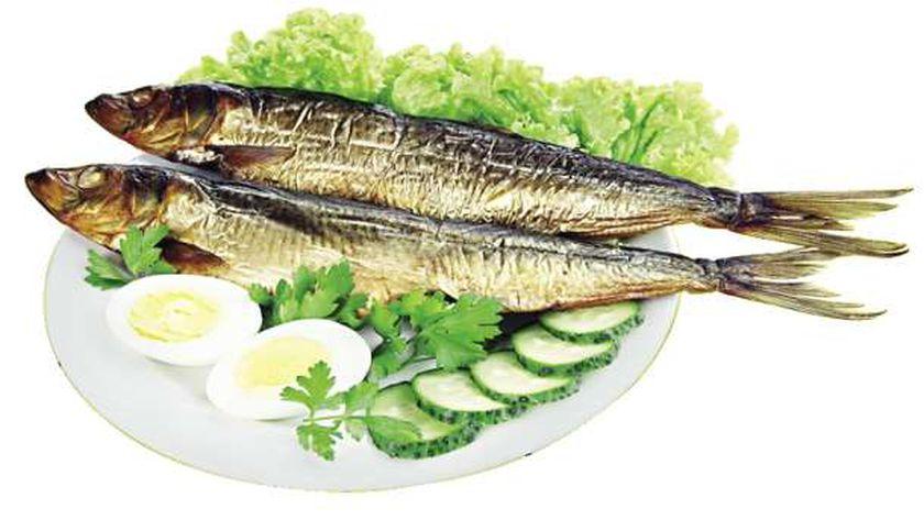 سمكة الرنجة