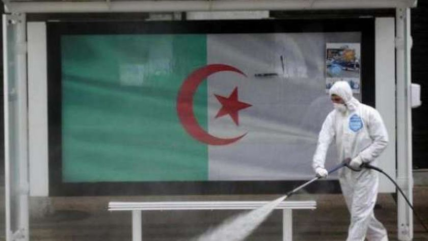 كورونا في الجزائر
