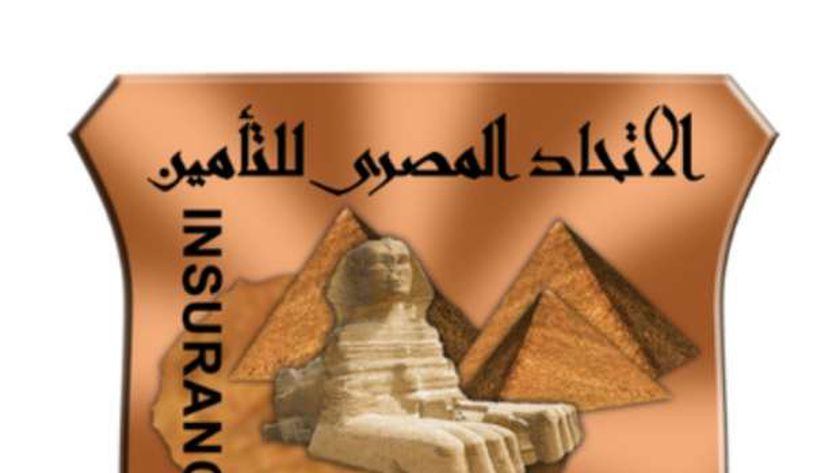 المصري للتأمين:فيروس كورونا حفز نمو العمل عبر الإنترنت