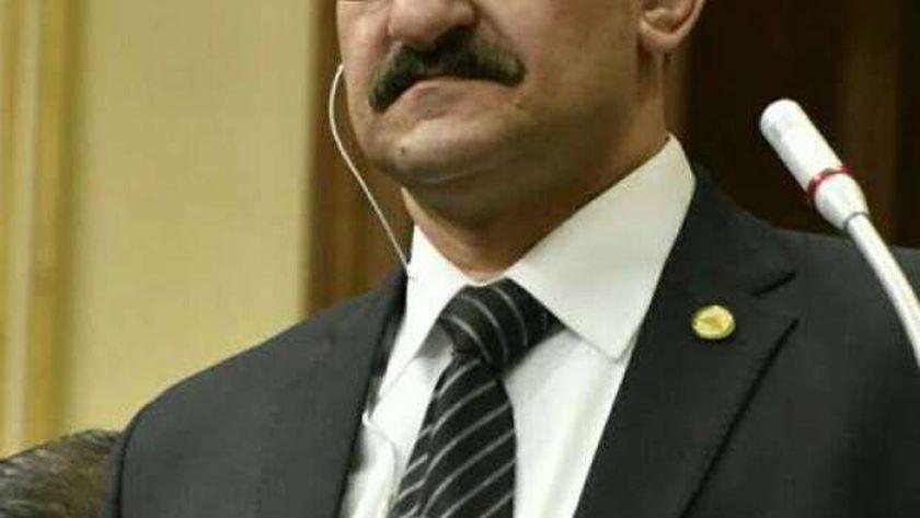 النائب محمد الغول، وكيل لجنة حقوق الإنسان بمجلس النواب