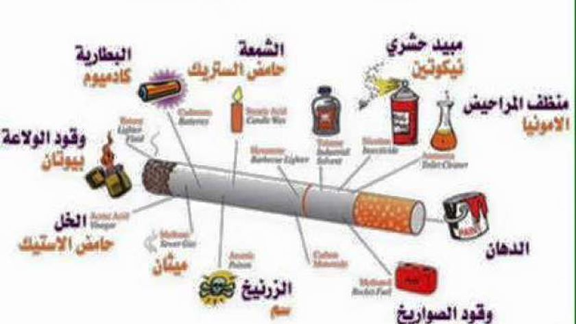 تنظم ندوة حول أضرار التدخين بمكتبة النزهة