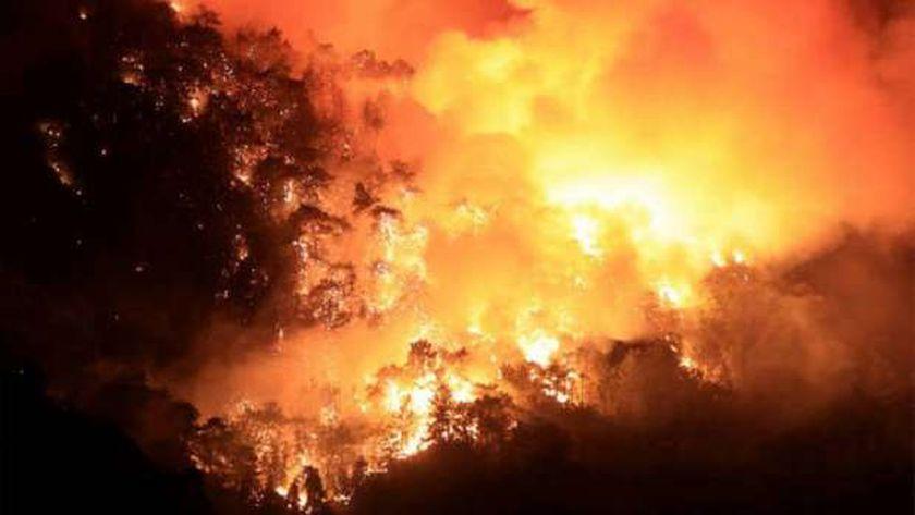 حرائق غابات تركيا