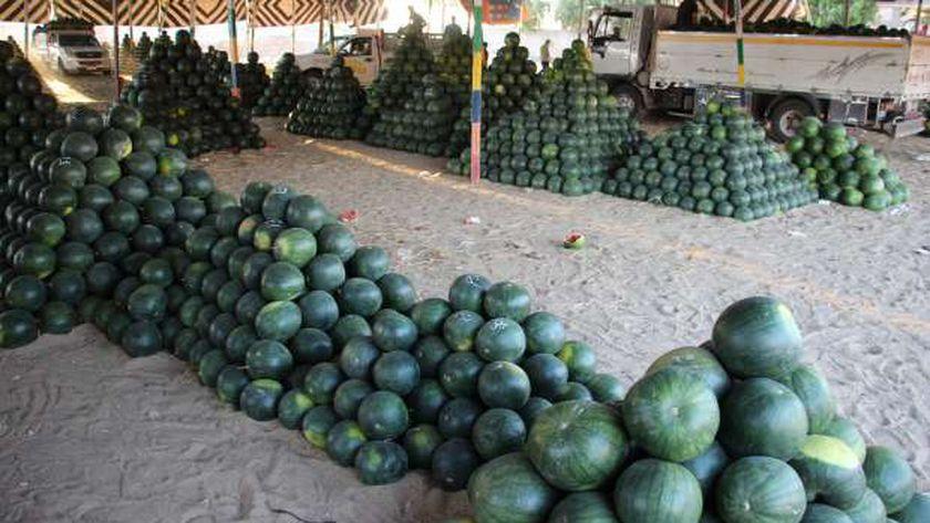 البطيخ بالأسواق