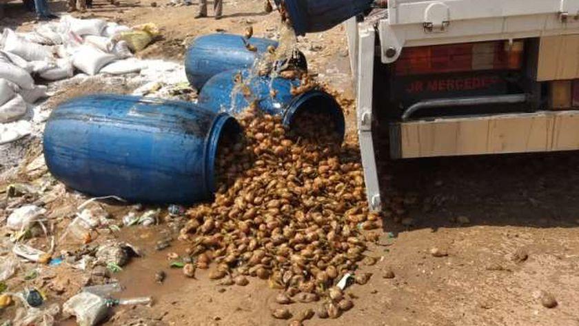صور.. إعدام 8 أطنان أغذية فاسدة بالعاشر من رمضان