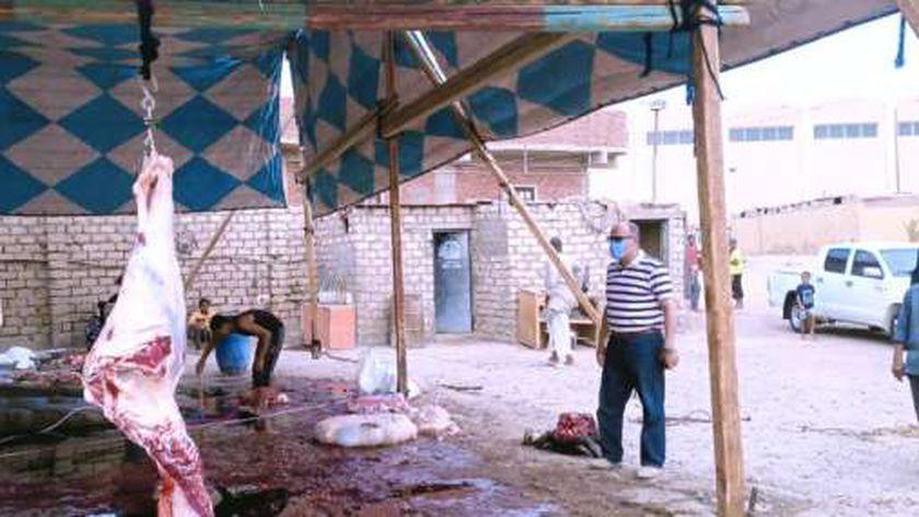 تشميع محل جزارة لمخالفته قرار منع الذبح بشوارع أسوان