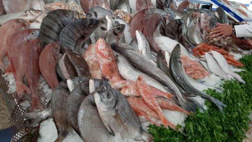 حلقة سمك
