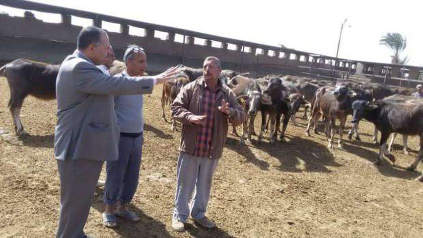 سكرتير مساعد أسيوط يتفقد أحد مزارع الثروة الحيوانية
